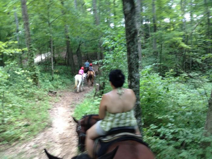 RidingAHorseDownHill