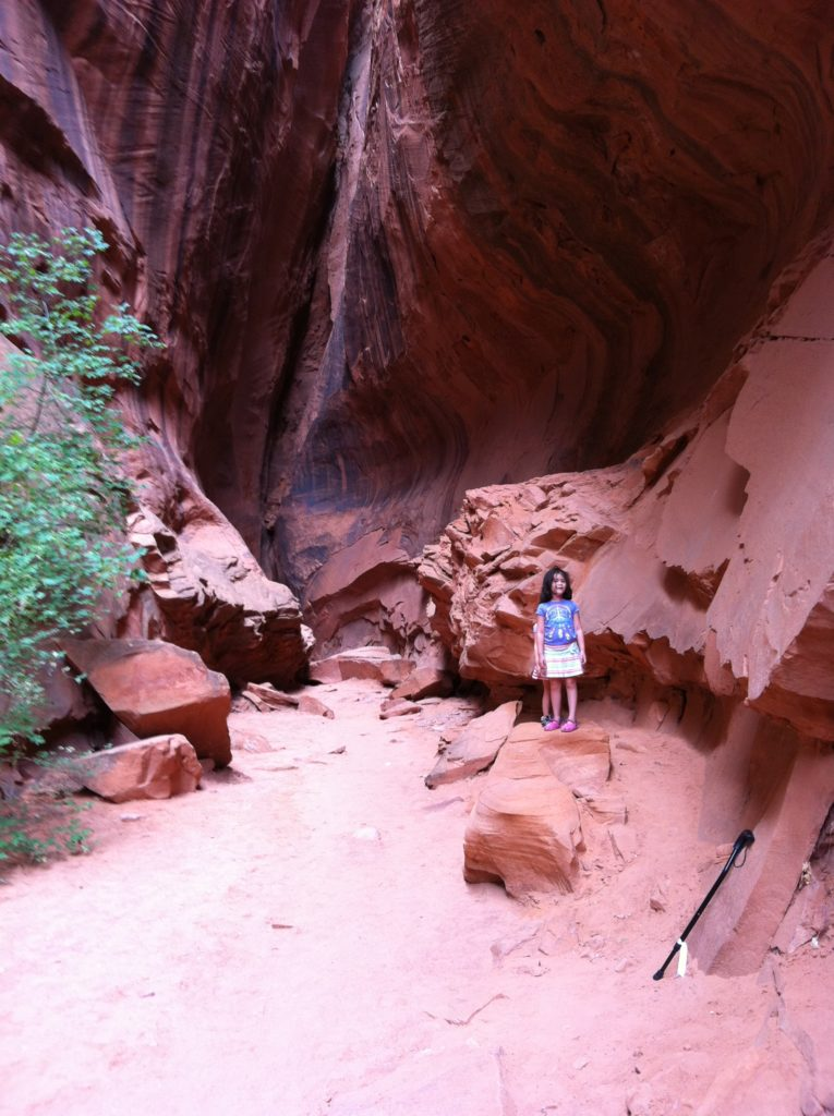 We would pull off the road on our drive and find these paths cut out of the rocks. They were great to walk through.