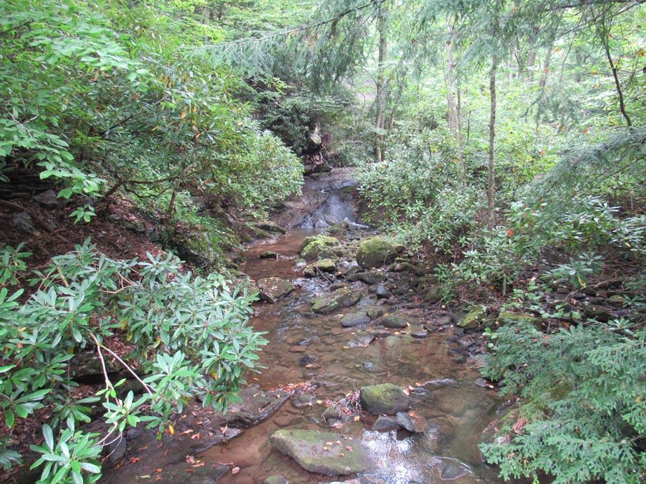 Surrounding streams