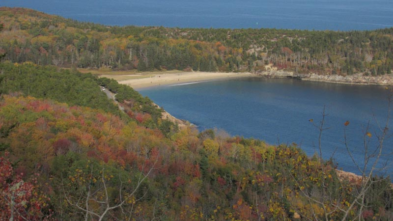 There is only one sand beach in Acadia, most of the shore is rock. It is appropriately named Sand Beach.