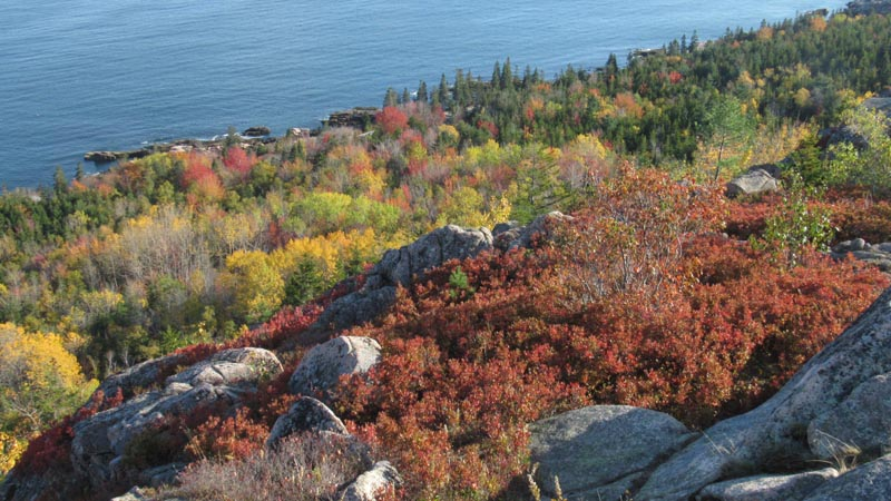 Over the two weeks we saw more and more grey leafless trees mixed into the colors. It was a signal, time to go.