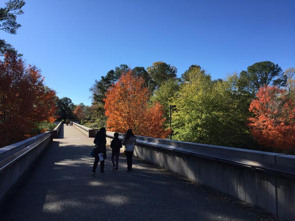 The bridge to the past at Colonial Williamsburg