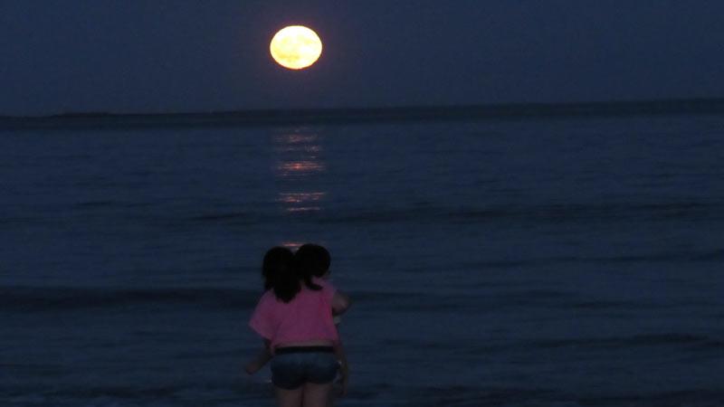 Kids Harvest Moon