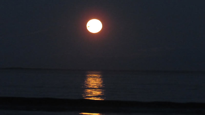 Orchard Beach Moon rise