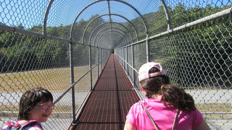 Prospect Mountain Climb Bridge