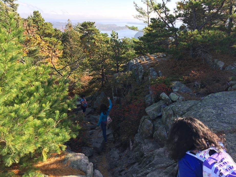 Scrambling down the Mountain