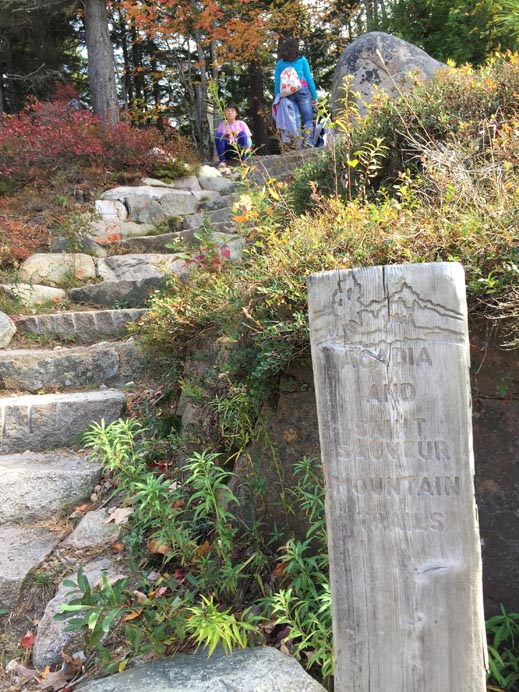 Start of the Acadia Trail