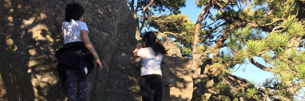 Beehive climb