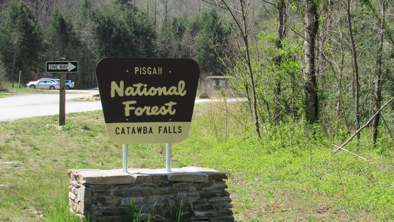 Catawba Falls National Forest Sign