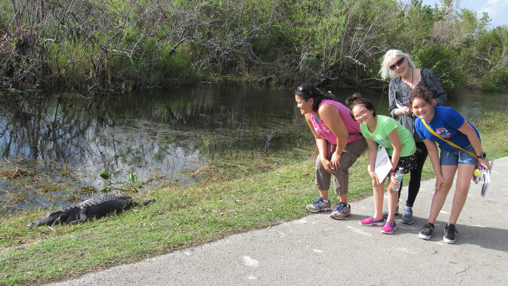 Picture with the alligator