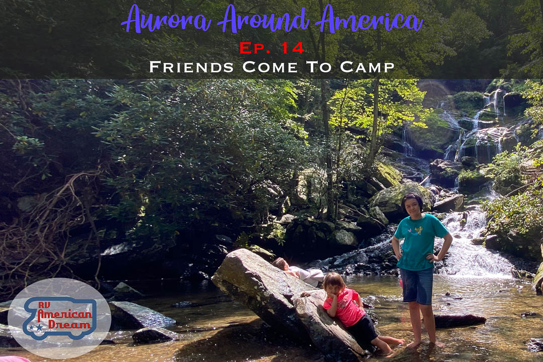 Friends Come To Camp